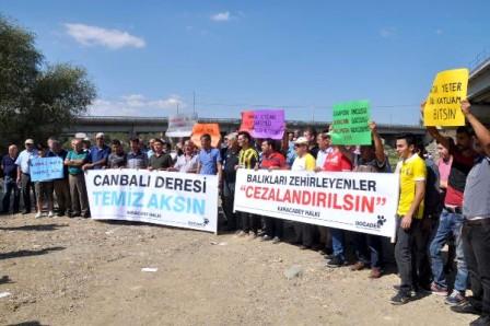 Balık katliamları protesto edildi